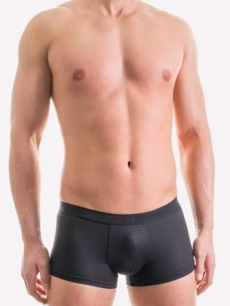 Boxer Sancy Hom